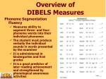 overview of dibels measures2