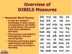 overview of dibels measures3