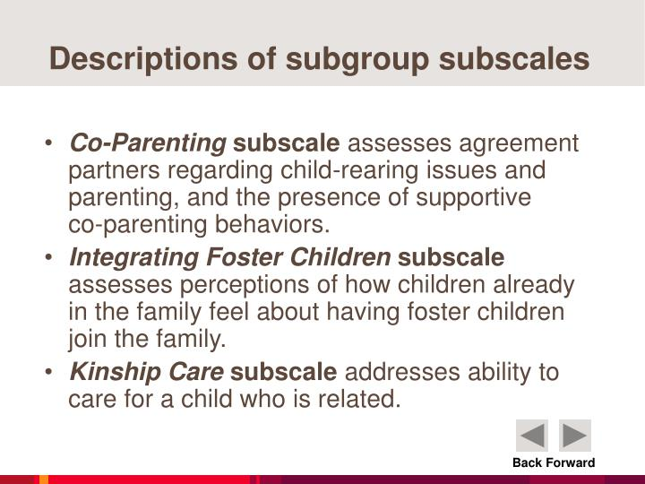 Descriptions of subgroup subscales