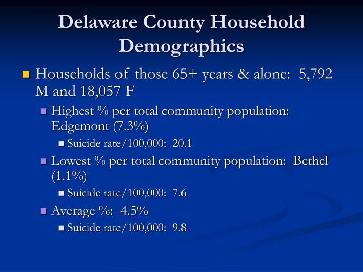 Delaware County Household Demographics
