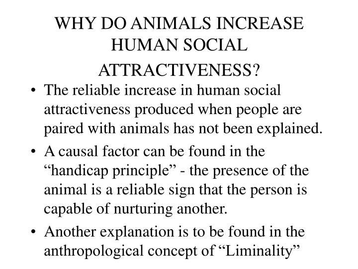 WHY DO ANIMALS INCREASE HUMAN SOCIAL ATTRACTIVENESS?