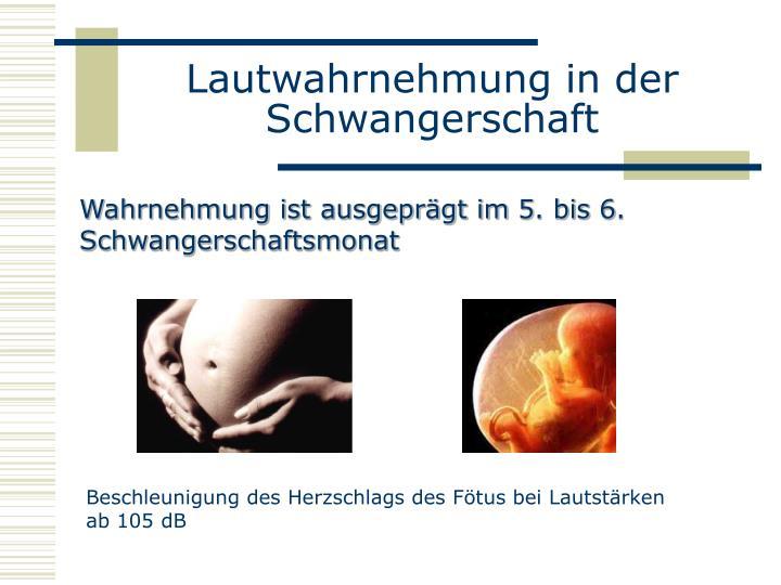 Lautwahrnehmung in der Schwangerschaft