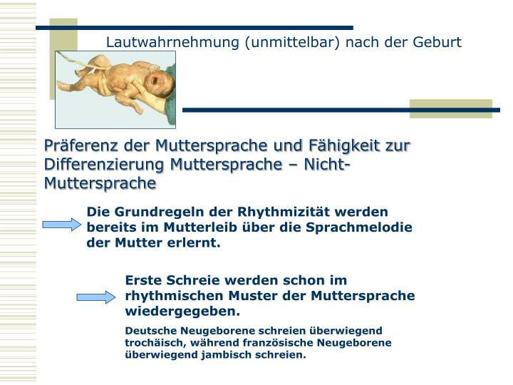 Lautwahrnehmung (unmittelbar) nach der Geburt