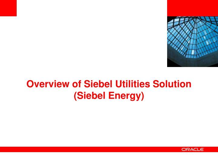 Overview of Siebel Utilities Solution