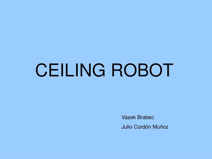 ceiling robot n.