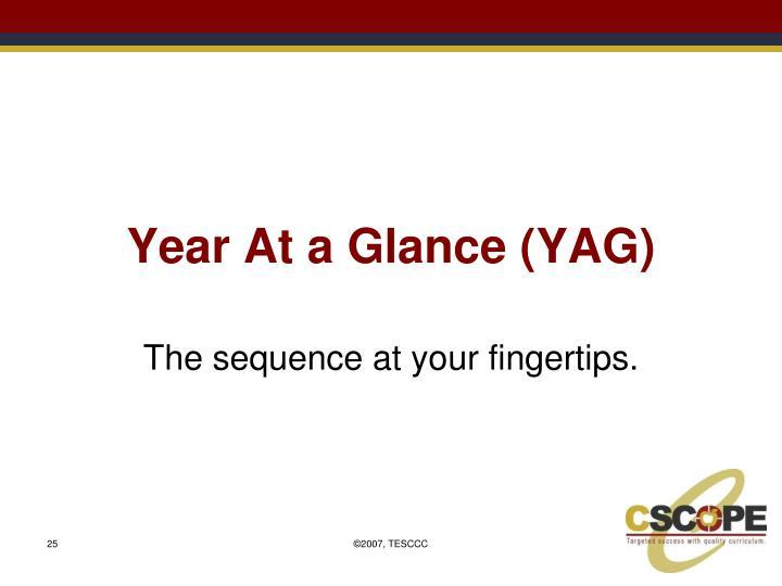 Year At a Glance (YAG)