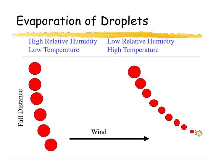 Evaporation of Droplets