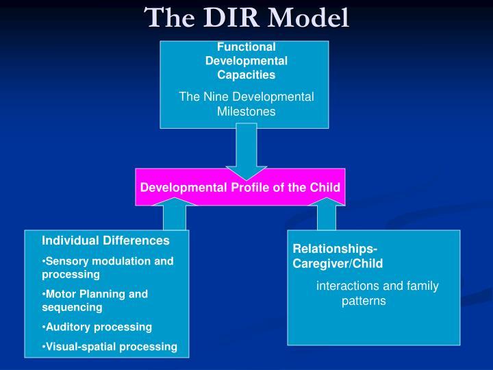 The dir model1