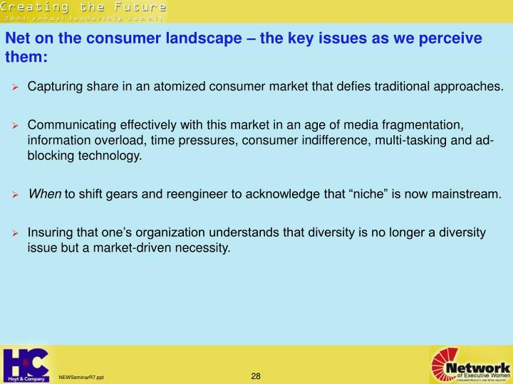 Net on the consumer landscape – the key issues as we perceive them: