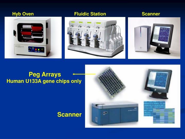 Hyb Oven     Fluidic StationScanner