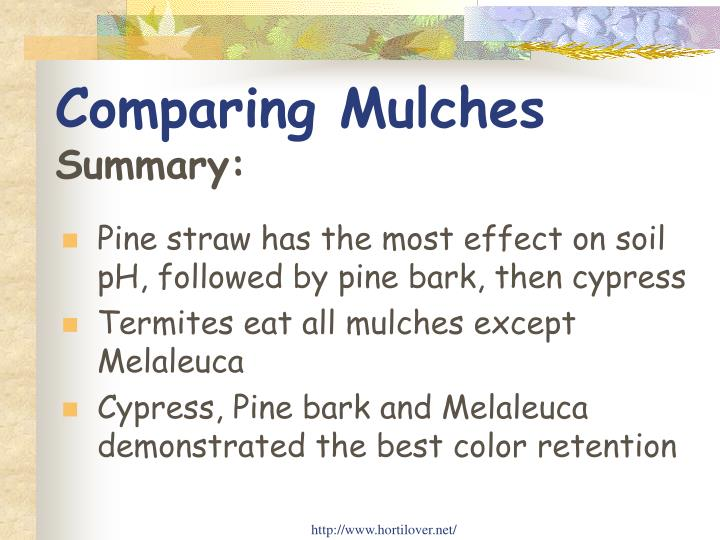 Comparing Mulches
