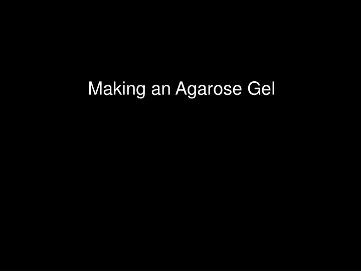 Making an Agarose Gel