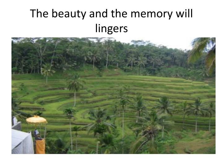 The beauty and the memory will lingers