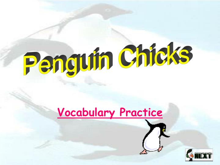 vocabulary practice n.