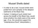 mussel shells dated1
