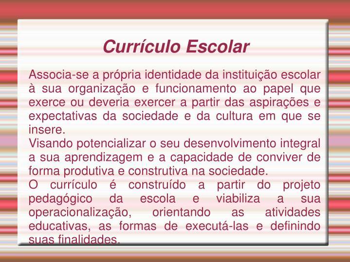 Associa-se a própria identidade da instituição escolar à sua organização e funcionamento ao papel que exerce ou deveria exercer a partir das aspirações e expectativas da sociedade e da cultura em que se insere.