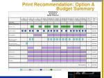 print recommendation option a budget summary