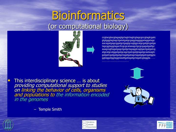 Bioinformatics or computational biology
