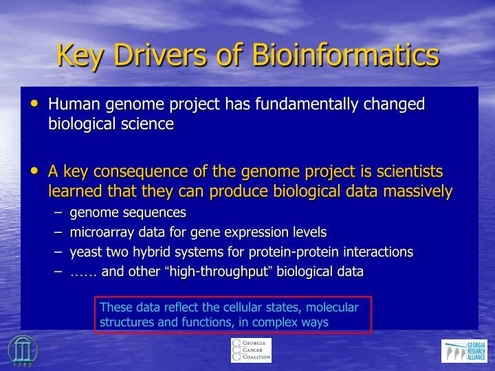 Key Drivers of Bioinformatics