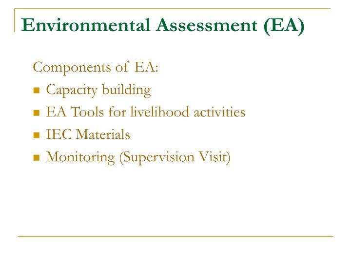 Environmental Assessment (EA)