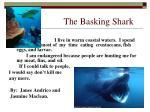 the basking shark