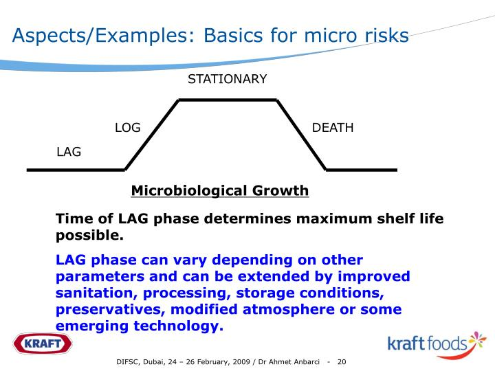 Aspects/Examples: Basics for micro risks
