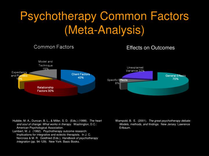 Psychotherapy Common Factors
