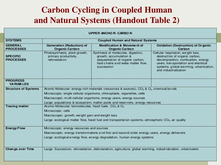 Carbon Cycling in Coupled Human