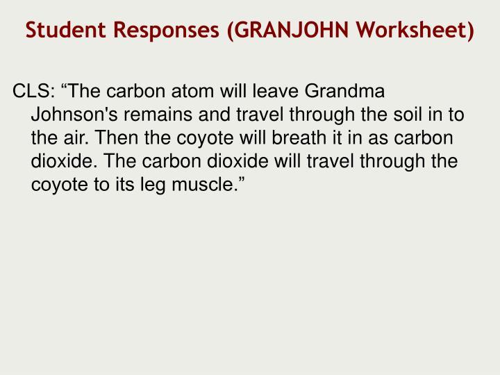 Student Responses (GRANJOHN Worksheet)