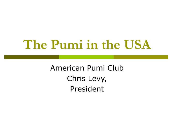 the pumi in the usa n.