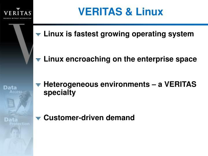 VERITAS & Linux