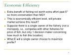 economic efficiency1