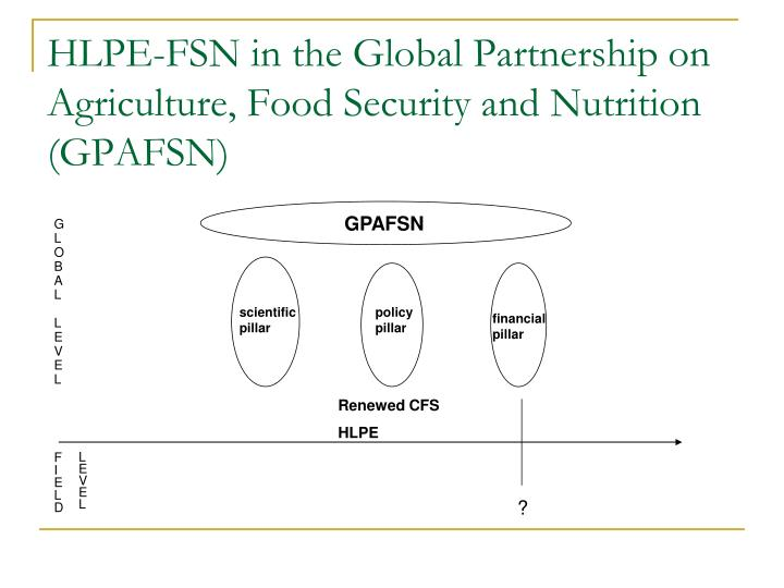 HLPE-FSN in the Global Partnership on Agriculture, Food Security and Nutrition (GPAFSN)