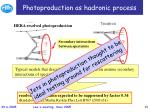 photoproduction as hadronic process