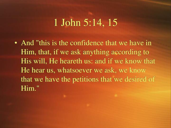 1 John 5:14, 15