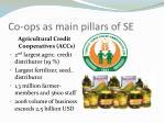 co ops as main pillars of se