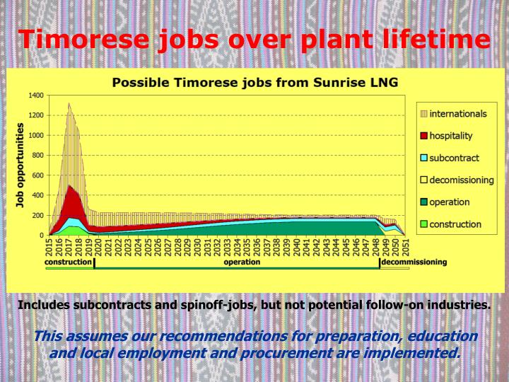 Timorese jobs over plant lifetime