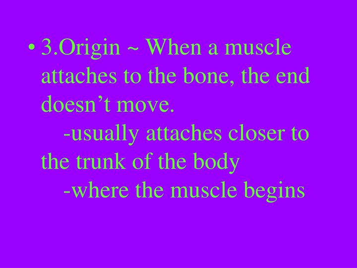 3.Origin ~ When a muscle attaches to the bone, the end doesn't move.					-usually attaches closer to the trunk of the body				-where the muscle begins