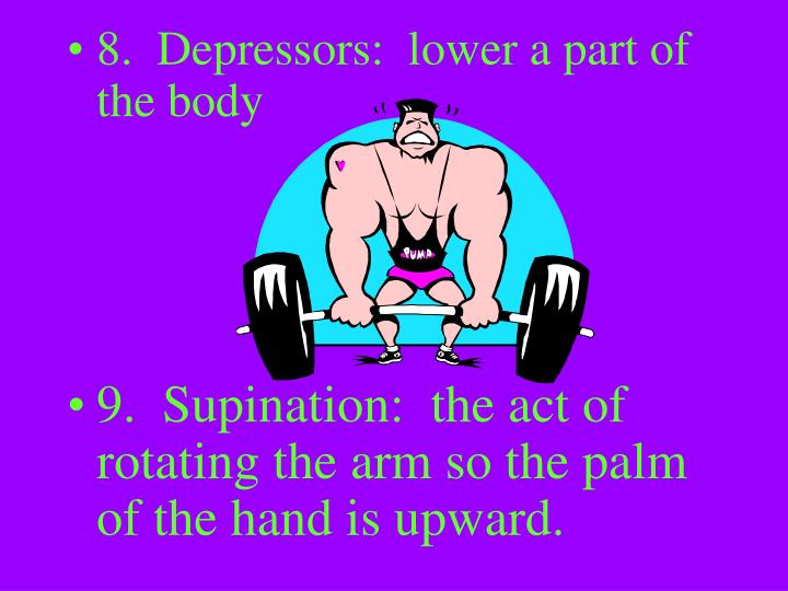 8.  Depressors:  lower a part of the body