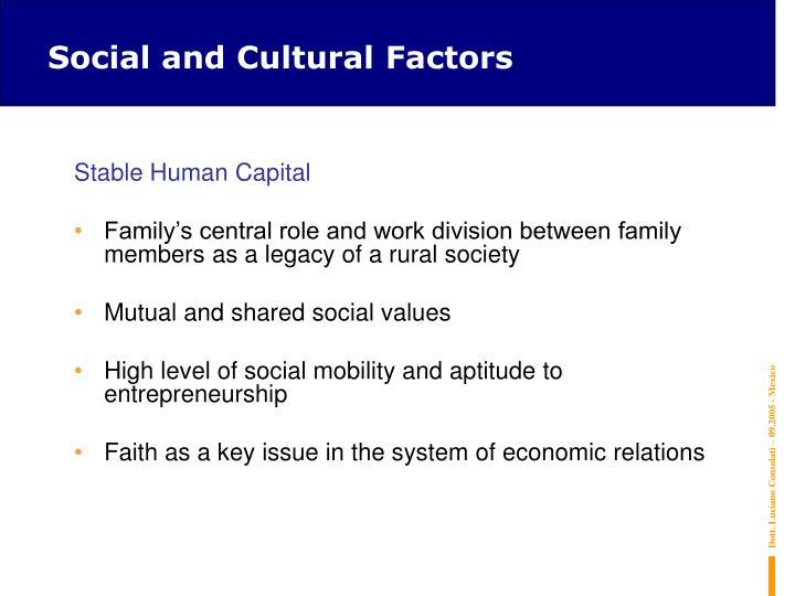 Social and Cultural