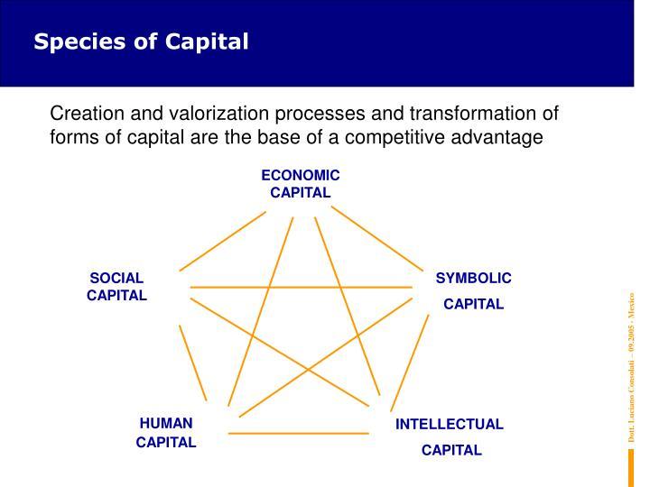 Species of Capital