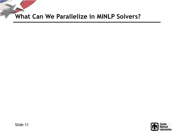 What Can We Parallelize in MINLP Solvers?