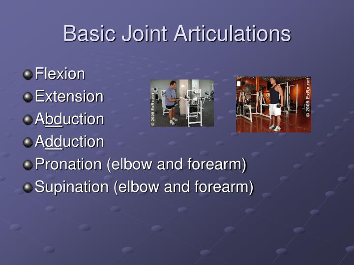 Basic Joint Articulations