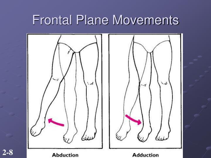 Frontal Plane Movements