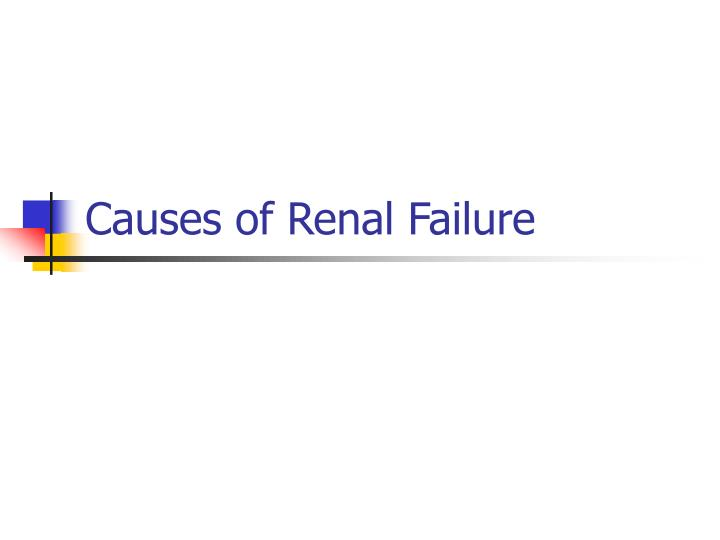 Causes of Renal Failure