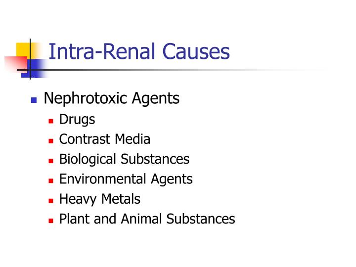 Intra-Renal Causes