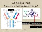 ab binding sites sequential conformational epitopes