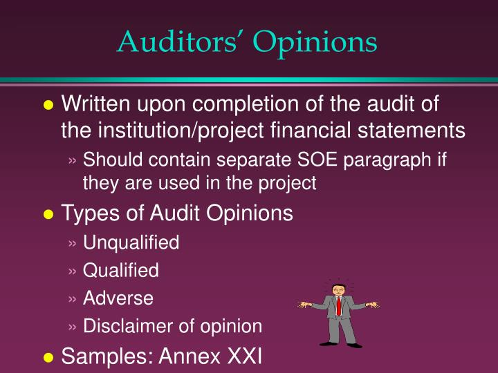 Auditors' Opinions