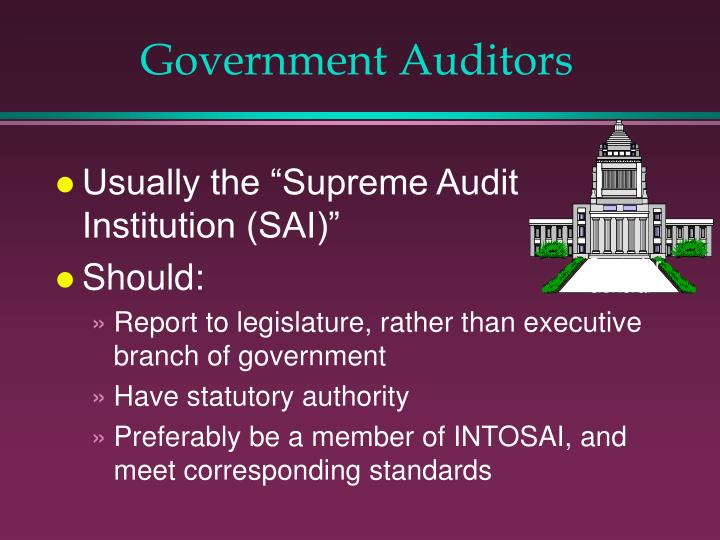 Government Auditors