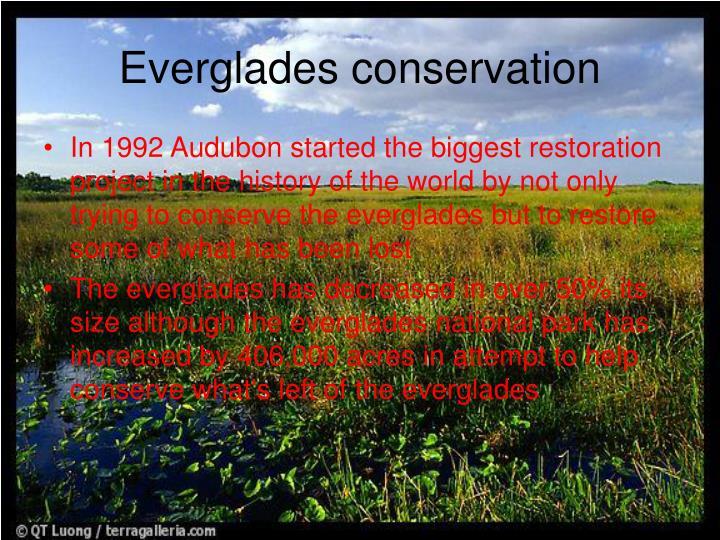 Everglades conservation